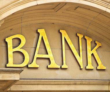 """Czy powinniśmy """"udomowić"""" banki w Polsce"""