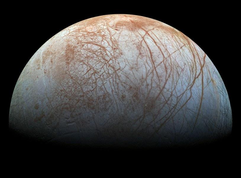 Czy życie może istnieć w takich miejscach jak lodowy księżyc Europa? /materiały prasowe