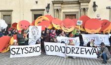 """""""Czysty protest"""" w Krakowie"""