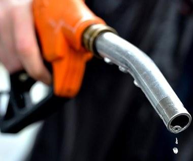 Dane o zużyciu paliwa to bzdury! Nawet na nie nie patrz!