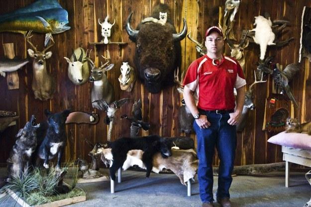 Daniel Ross i jego kolekcja wypchanych zwierząt /The New York Times