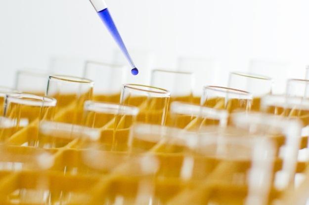 DARPA chce przeprowadzać eksperymenty biologiczne /stock.xchng
