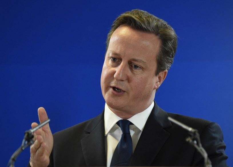 David Cameron zabrał głos w sprawie pedofilii /AFP