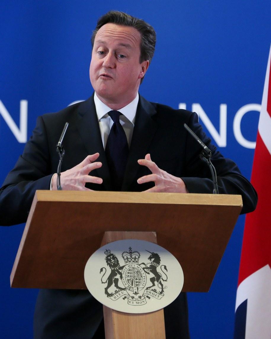 David Cameron /OLIVIER HOSLET /PAP/EPA