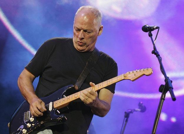 David Gilmour z Pink Floyd na scenie - fot. MJ Kim /Getty Images