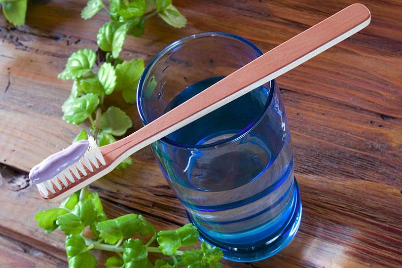 Dentyści odradzają używanie szczoteczek z włosia naturalnego, bo każdy włos ma kanalik, w którym gromadzi się mnóstwo bakterii. /123RF/PICSEL