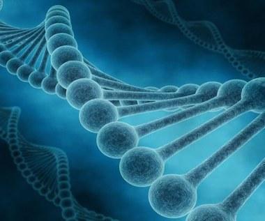 Detektor ciemnej materii oparty o DNA