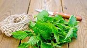 Detoks naturą, czyli przepisy na smaczne i zdrowe potrawy oczyszczające