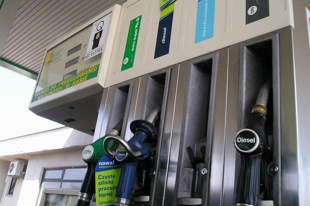 Diesel się już nie opłaca? /INTERIA.PL