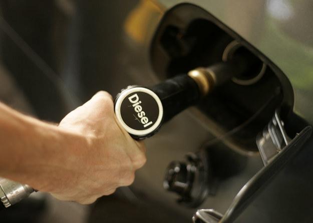 Diesel to jednak diesel. Polacy łatwo nie odpuszczą /Getty Images