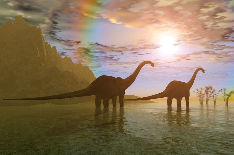Dinozaury miały pecha? Wszystko na to wskazuje /123RF/PICSEL
