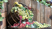 Dlaczego powinniśmy jeść winogrona?