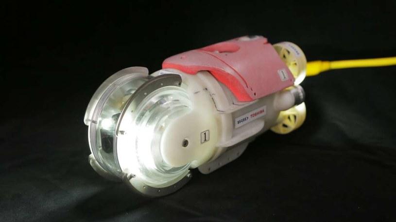 Do Fukushimy zostanie wysłany pływający robot /materiały prasowe