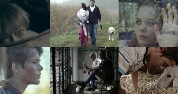 Do Konkursu Młodego Kina zakwalifikowano w tym roku 25 filmów /materiały prasowe