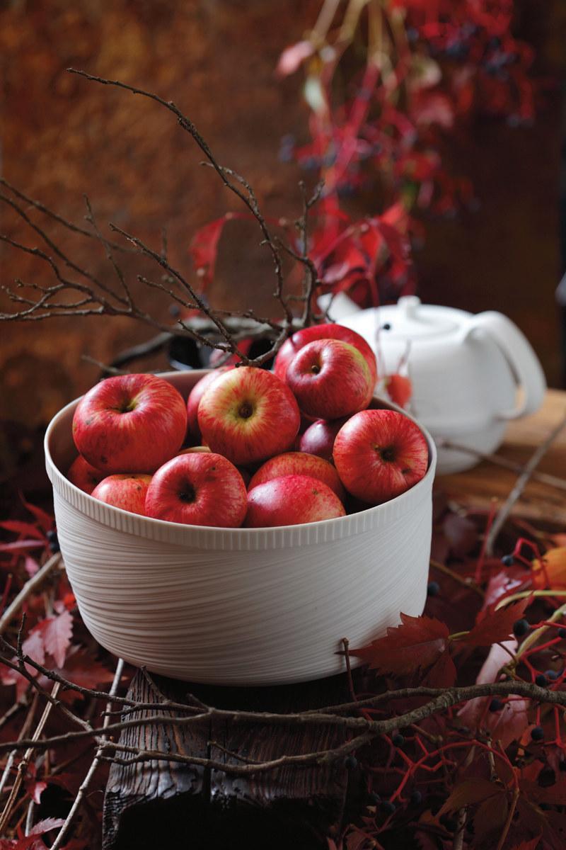 Do kulinarnych działań z jabłkami potrzebne są te oryginalne - renety szare i złote, antonówki, kosztele /Bogdan Biały /Pani