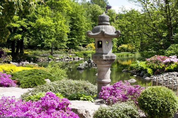Do Ogrodu Japońskiego we Wrocławiu przyjeżdżają wycieczki z całego świata/fot. E. Stożek /Reporter