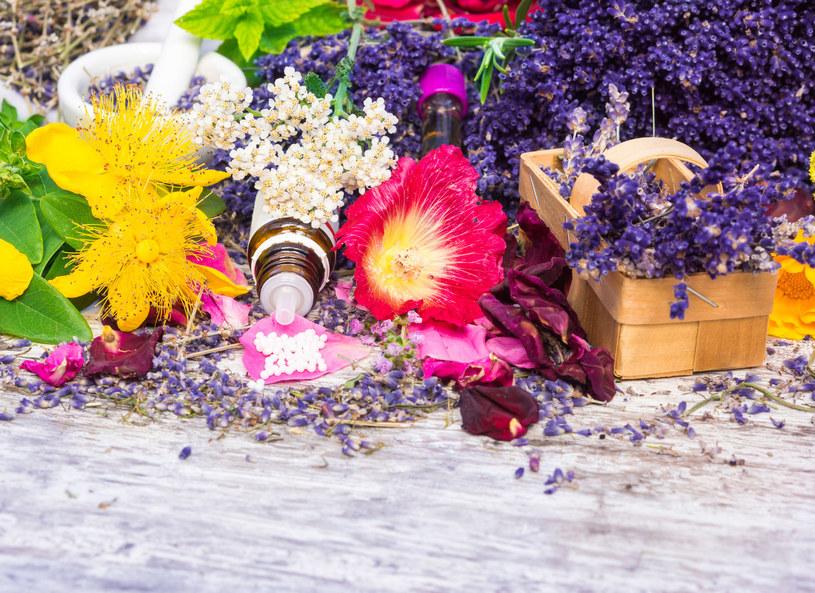 Do produkcji leków homeopatycznych są wykorzystywane naturalne surowce pochodzenia roślinnego /Picsel /©123RF/PICSEL