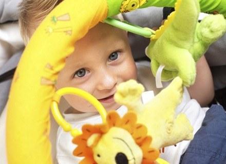 Dobierz zabawkę odpowiednią do wieku dziecka /ThetaXstock