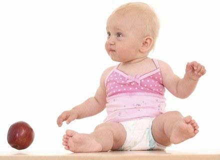 Dołóż starań, by maluch polubił soczyste jabłka, gruszki, śliwki i... /ThetaXstock