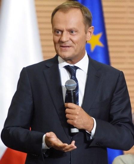 Donald Tusk /PAP/Jacek Bednarczyk /PAP