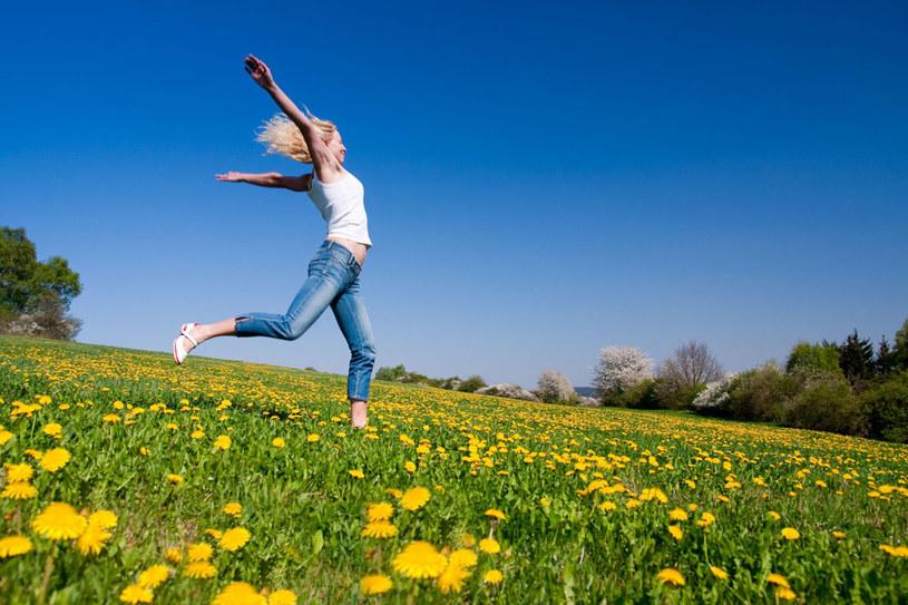 Dopadło cię wiosenne znużenie? Przytul się do brzozy. To drzewo pobudza naszą energię witalną, przeciwdziała zmęczeniu i rozjaśnia umysł. /123RF/PICSEL