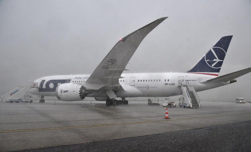 Dreamliner LOT-u /Radek Pietruszka /PAP