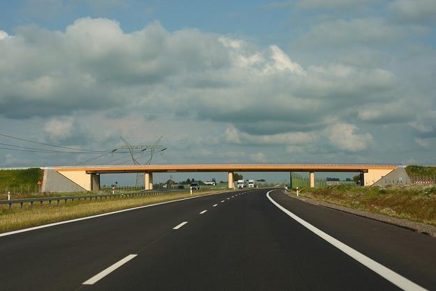 Droga ekspresowa - niemal jak autostrada / Fot: Stanisław Kowalczuk /East News