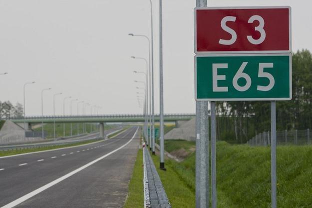 Droga S3 przeszkadza żabom / Fot: Robert Stachnik /Reporter