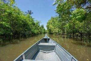 Dron poszuka śladów cywilizacji w lasach Amazonii