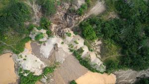 Drony będą chronić lasy deszczowe Amazonii