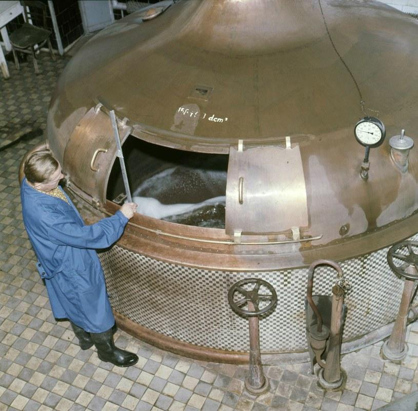 Drożdże wykonują magiczną pracę, dzięki której z brzeczki otrzymujemy piwo /Zenon Zyburotwicz /East News