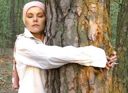 Drzewoterapia - nie zaszkodzi a może pomóc, fot. Borys Czonkow /MWMedia