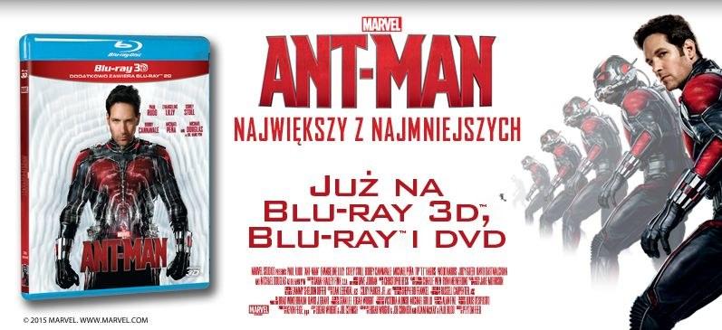 "Dystrybutorem filmu ""Ant-Man"" na płytach DVD i Blu-ray jest Galapagos Films /materiały dystrybutora"