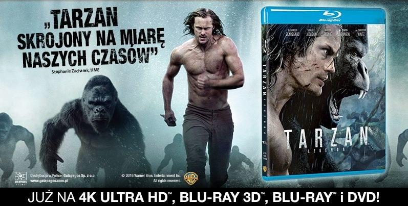 """Dystrybutorem filmu """"Tarzan: Legenda"""" na płytach Blu-ray i DVD jest Galapagos Films /materiały dystrybutora"""
