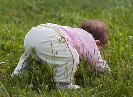 Dzieci są niezwykle aktywne i ciekawskie, a przez to bardziej narażone na urazy /© Panthermedia