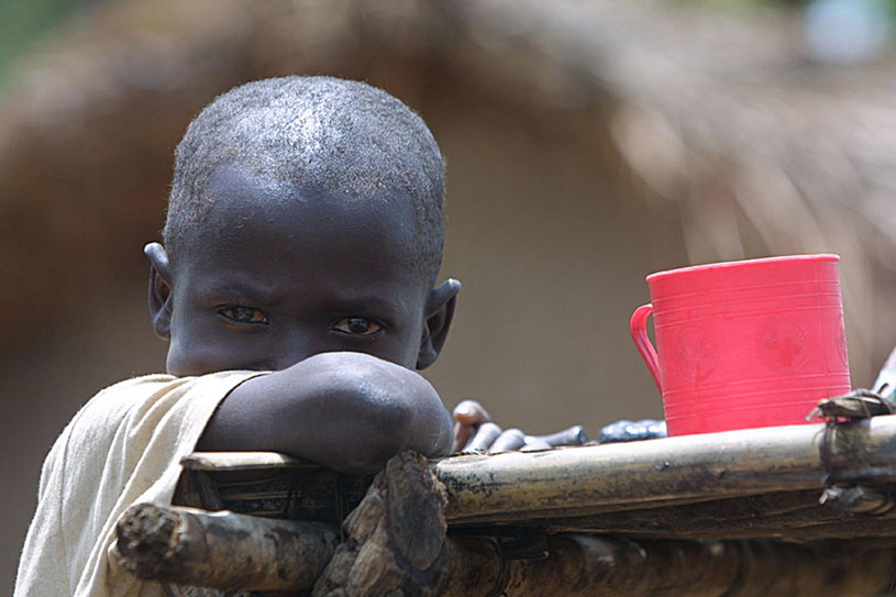 Dzieci w Demokratycznej Republice Konga czekają na pomoc /AFP
