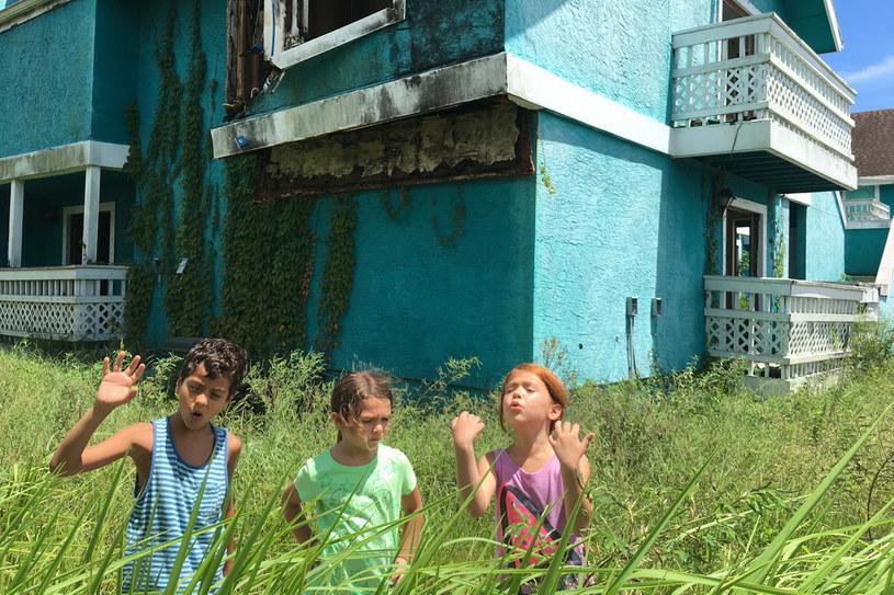 """Dzieciaki rządzą w """"The Florida Project"""" /materiały prasowe"""