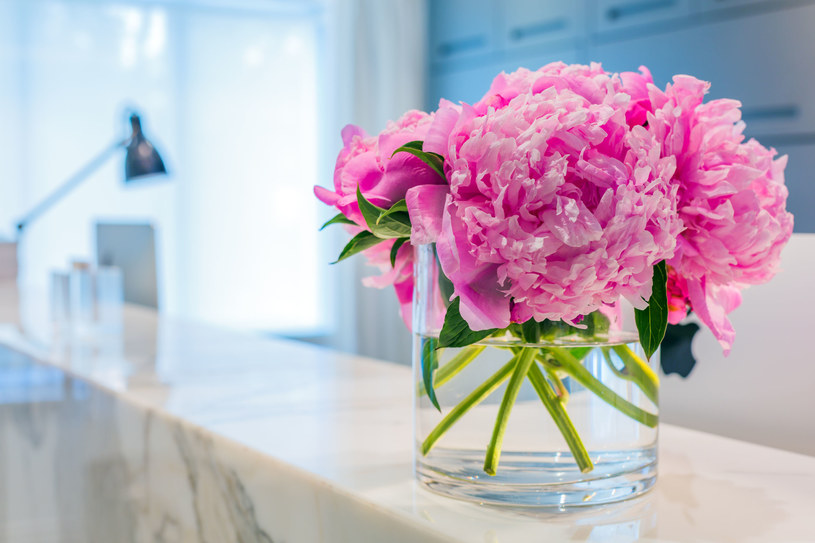 Dzięki odpowiedniej pielęgnacji cięte kwiaty mogą dłużej cieszyć oczy /123RF/PICSEL