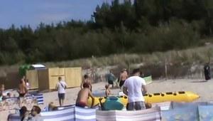 Dzik zaatakował ludzi na plaży!