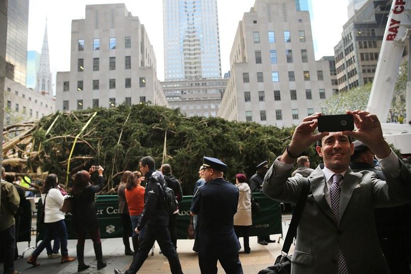 Efektowna choinka jest już w Nowym Jorku /AFP
