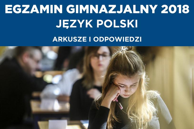 Egzamin gimnazjalny 2018. Język polski /Karolina Misztal /Reporter
