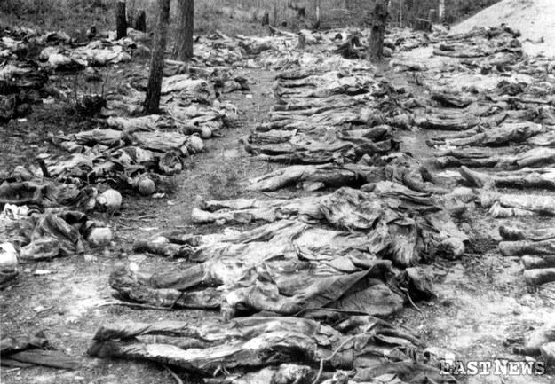 Ekshumacja zwłok jeńców rozstrzelanych w Katyniu (1943 r.) /Laski Diffusion /East News