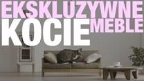 Ekskluzywne, ręcznie robione meble dla kotów