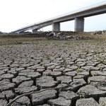 Ekstremalna susza w jednym z krajów Europy. Objęła aż 95 proc. terytorium