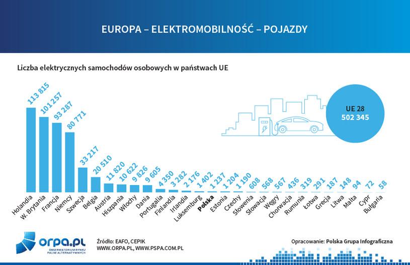Elektryczne pojazdy w UE /INTERIA.PL/informacje prasowe