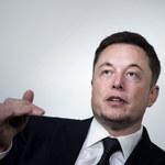 Elon Musk zajmie się produkcją słodyczy