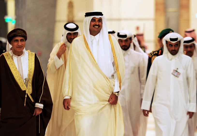 Emir Kataru Tamim ibn Hamad Al Sani /AFP