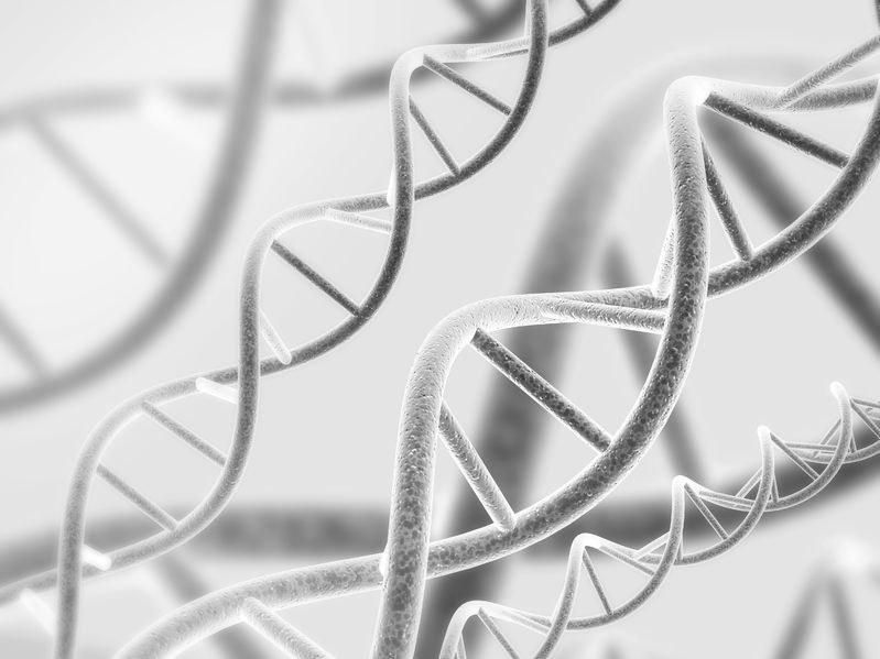 Endonukleazy, które powinny naprawiać DNA jednak je uszkadzają /©123RF/PICSEL