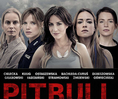 ENEMEF: Maraton Pitbulla