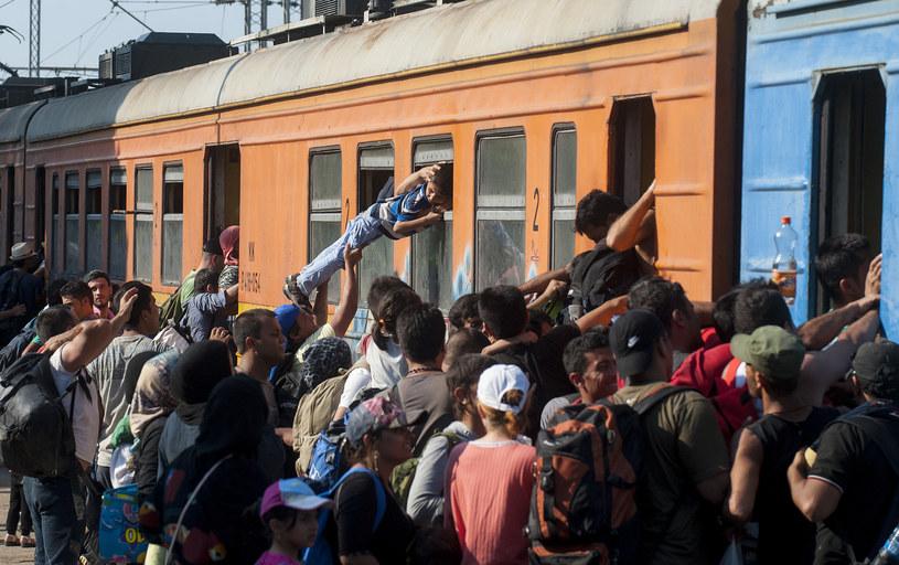 Europa zmaga się z falą imigrantów /AFP